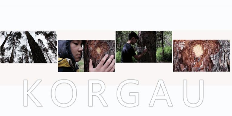 Korgau_video
